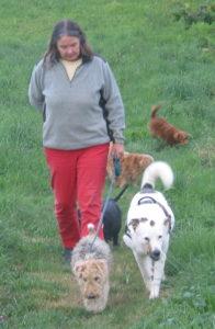 diese Hundeforum ist mir ein Herzensanliegen, vor allem nach meiner Zeit mit den Hunden auf dem Tierschutzhof in Frankreich, mit einigen von ihnen gehe ich auf diesem Foto eine der beiden täglichen Gassirundenn